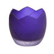 Egg Mor Mumluk